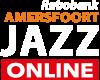 New Online Festival logo 72 dpi scherm